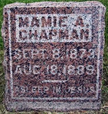 CHAPMAN, MAMIE A. - Fayette County, Iowa   MAMIE A. CHAPMAN