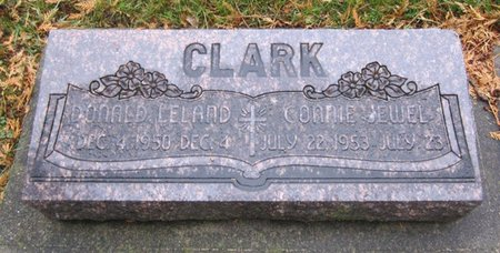 CLARK, DONALD LELAND - Fayette County, Iowa | DONALD LELAND CLARK