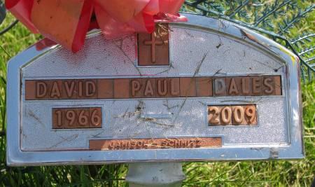 DALES, DAVID PAUL - Fayette County, Iowa | DAVID PAUL DALES