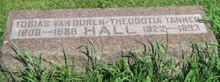 HALL, THEODOTIA - Fayette County, Iowa | THEODOTIA HALL