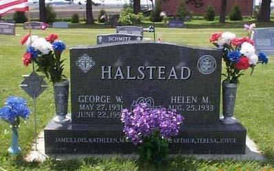 HALSTEAD, GEORGE W. - Fayette County, Iowa | GEORGE W. HALSTEAD