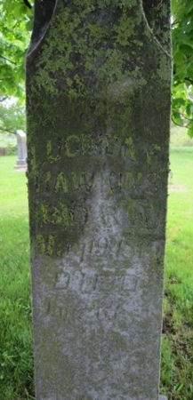 HAWKINS, LUCINDA F. - Fayette County, Iowa   LUCINDA F. HAWKINS