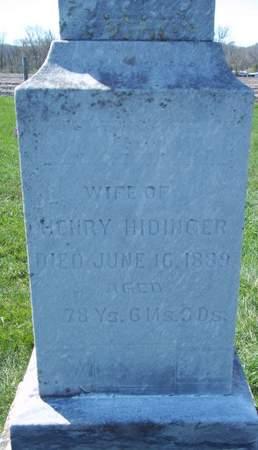 HIDINGER, KUNUGUNDA - Fayette County, Iowa | KUNUGUNDA HIDINGER
