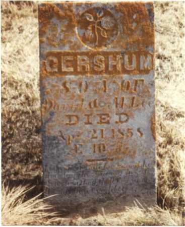 LEE, GERSHUM - Fayette County, Iowa | GERSHUM LEE