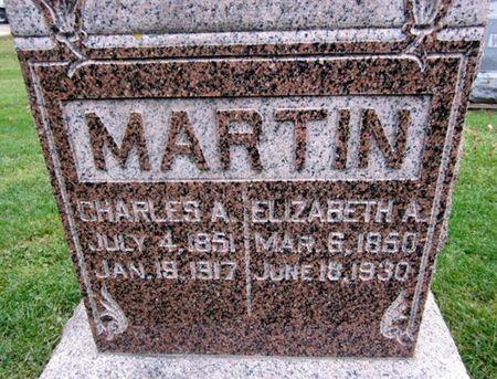 MARTIN, ELIZABETH ANN - Fayette County, Iowa   ELIZABETH ANN MARTIN