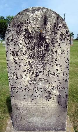 RILEY MCNAUL, ELIZABETH U. - Fayette County, Iowa | ELIZABETH U. RILEY MCNAUL