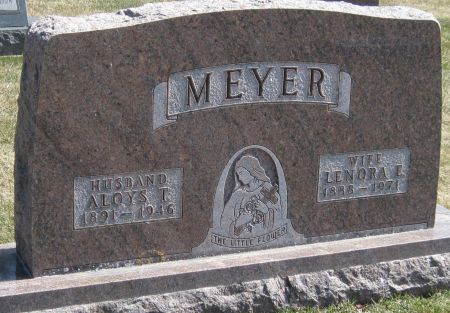 MEYER, ALOYS T - Fayette County, Iowa   ALOYS T MEYER