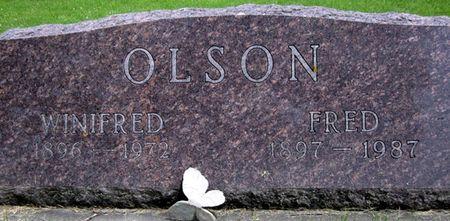 OLSON, WINIFRED - Fayette County, Iowa | WINIFRED OLSON