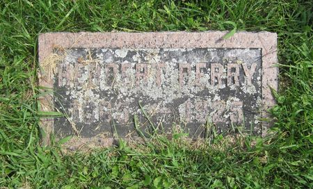 PERRY, HERBERT - Fayette County, Iowa   HERBERT PERRY