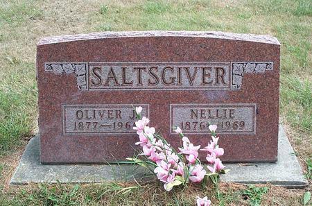 GLETTY SALTSGIVER, NELLIE - Fayette County, Iowa | NELLIE GLETTY SALTSGIVER