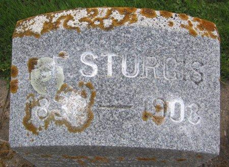 STURGIS, PHINEAS F. - Fayette County, Iowa   PHINEAS F. STURGIS