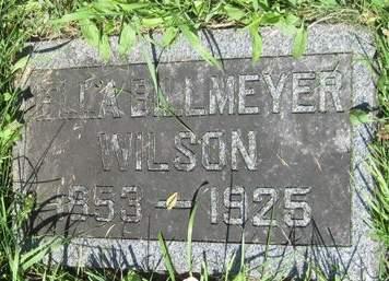 WILSON, ELLA - Fayette County, Iowa | ELLA WILSON