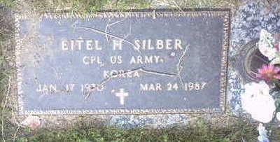 SILBER, EITEL - Floyd County, Iowa | EITEL SILBER