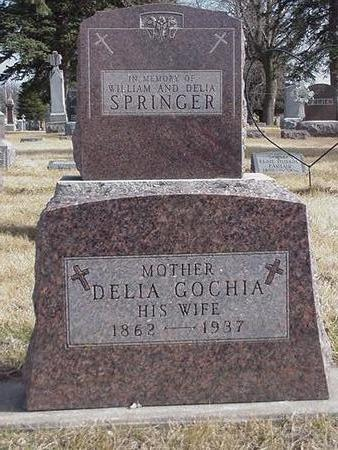 SPRINGER, DELIA - Floyd County, Iowa | DELIA SPRINGER