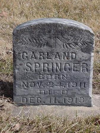 SPRINGER, GARLAND - Floyd County, Iowa | GARLAND SPRINGER