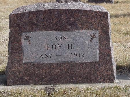 SPRINGER, ROY H. - Floyd County, Iowa | ROY H. SPRINGER