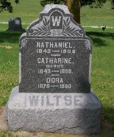 WILTSE, CATHARINE - Floyd County, Iowa | CATHARINE WILTSE