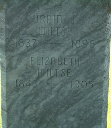 WILTSE, ELIZABETH ANN - Floyd County, Iowa | ELIZABETH ANN WILTSE