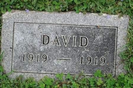 ZANDER, DAVID - Franklin County, Iowa   DAVID ZANDER