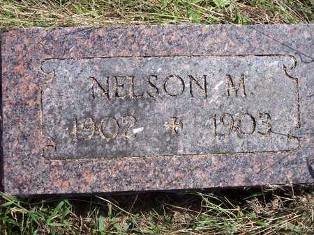 THORNTON, NELSON M. - Fremont County, Iowa | NELSON M. THORNTON