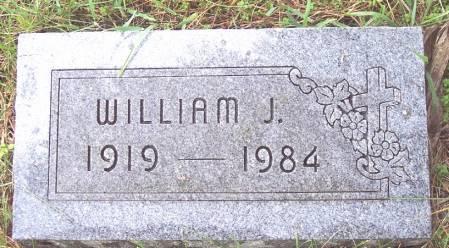 CUSTER, WILLIAM J - Greene County, Iowa   WILLIAM J CUSTER