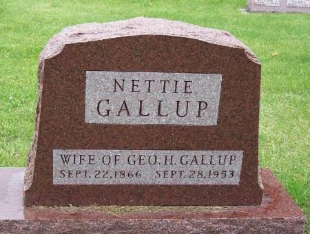DAVENPORT GALLUP, NETTIE - Greene County, Iowa | NETTIE DAVENPORT GALLUP