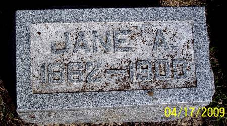 LUTHER, JANE A - Greene County, Iowa   JANE A LUTHER