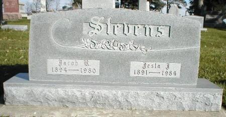 STEVENS, JESTA J. - Greene County, Iowa | JESTA J. STEVENS