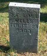 WELLS, JOHN D. - Greene County, Iowa   JOHN D. WELLS