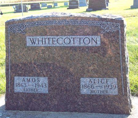 WHITECOTTON, AMOS - Greene County, Iowa | AMOS WHITECOTTON