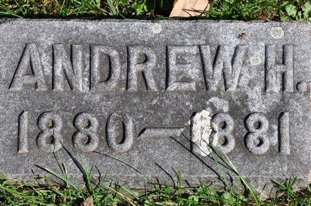 BURLEY, ANDREW H. - Grundy County, Iowa   ANDREW H. BURLEY