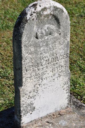 DILGER, WILLIS F. - Grundy County, Iowa | WILLIS F. DILGER