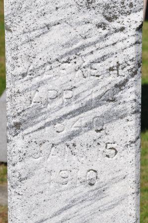 HERONIMUS, AAFKE H. - Grundy County, Iowa   AAFKE H. HERONIMUS