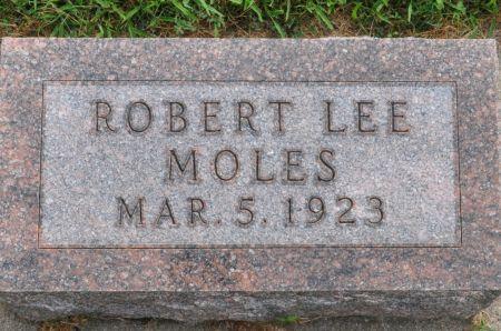 MOLES, ROBERT LEE - Grundy County, Iowa | ROBERT LEE MOLES