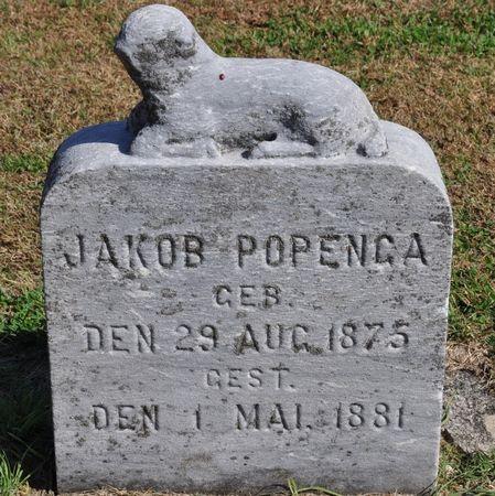 POPENGA, JAKOB - Grundy County, Iowa | JAKOB POPENGA