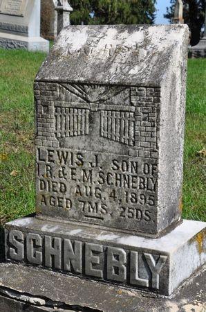 SCHNEBLY, LEWIS J. - Grundy County, Iowa | LEWIS J. SCHNEBLY
