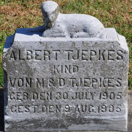 TJEPKES, ALBERT - Grundy County, Iowa | ALBERT TJEPKES