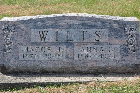 WILTS, JACOB J. - Grundy County, Iowa | JACOB J. WILTS