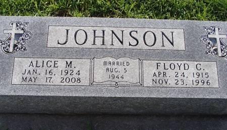 JOHNSON, ALICE M - Guthrie County, Iowa | ALICE M JOHNSON