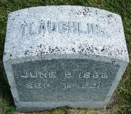 LAUGHLIN, T. - Guthrie County, Iowa | T. LAUGHLIN
