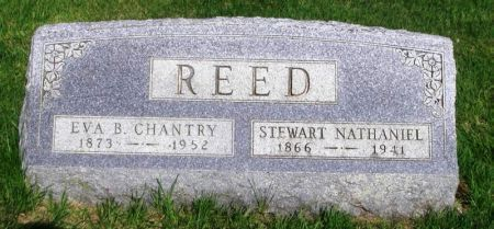 REED, STEWART NATHANIEL - Guthrie County, Iowa   STEWART NATHANIEL REED