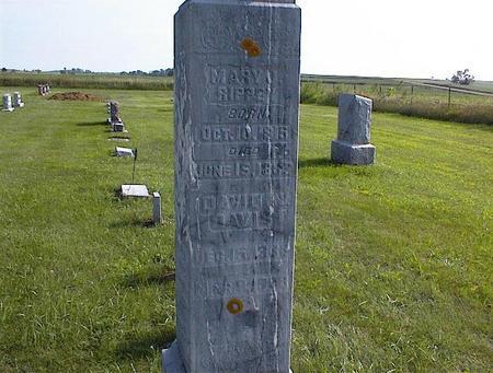 DAVIS, DAVID N. - Guthrie County, Iowa | DAVID N. DAVIS