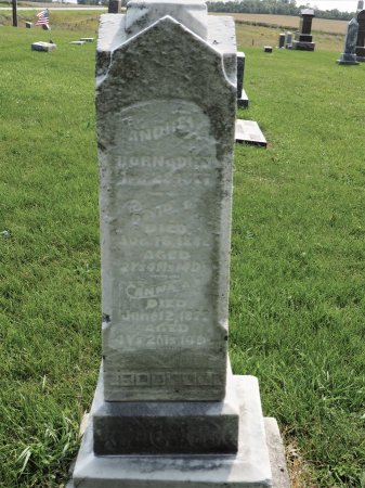 ANDERSON, ANNA A. - Hamilton County, Iowa   ANNA A. ANDERSON