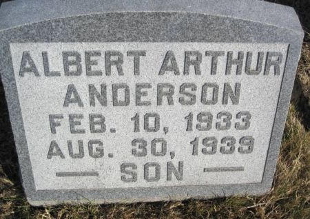 ANDERSON, ALBERT ARTHUR - Hamilton County, Iowa | ALBERT ARTHUR ANDERSON