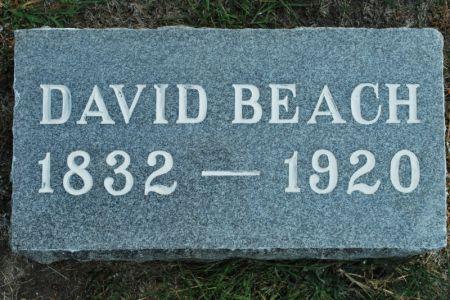 BEACH, DAVID - Hamilton County, Iowa | DAVID BEACH