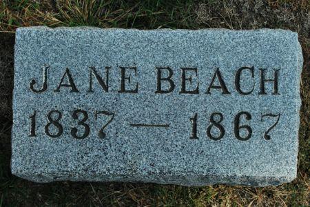 BEACH, JANE - Hamilton County, Iowa | JANE BEACH