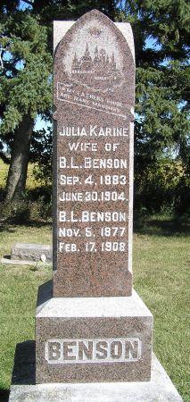 BENSON, B. L. - Hamilton County, Iowa | B. L. BENSON