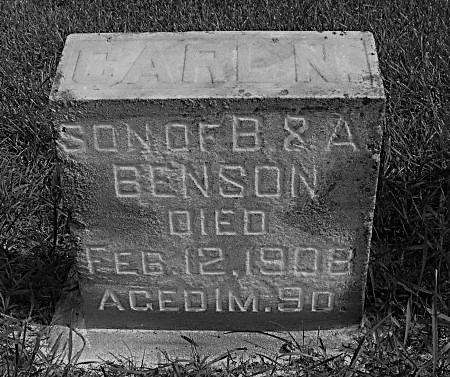 BENSON, CARL N. - Hamilton County, Iowa | CARL N. BENSON