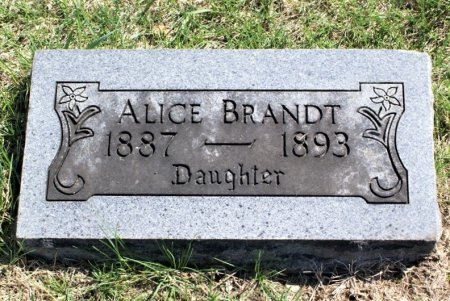 BRANDT, ALICE - Hamilton County, Iowa | ALICE BRANDT