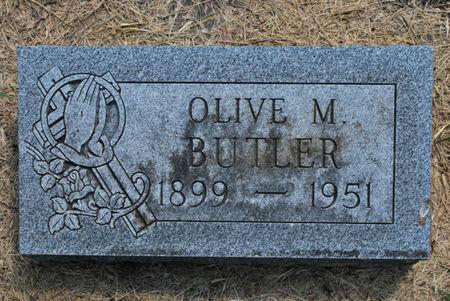 BUTLER, OLIVE M - Hamilton County, Iowa | OLIVE M BUTLER